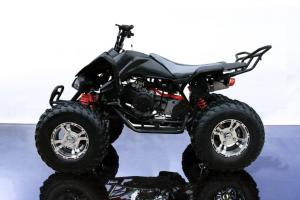 Complete Vehicles | Buggy Depot
