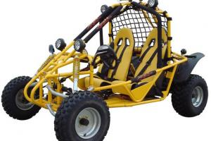 Complete Vehicles   Buggy Depot